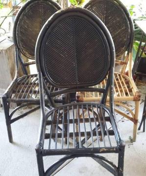 Cane Garden Chairs